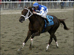 Avatar of Smarty Jones