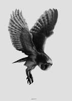 Avatar of Themerlinhawk