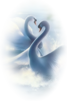 Avatar of spiral origin