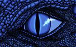Avatar of DraconiWarlord