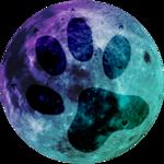 Avatar of Lunamositi