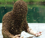 Avatar of Beekeeper