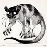 Avatar of Strange Rodent